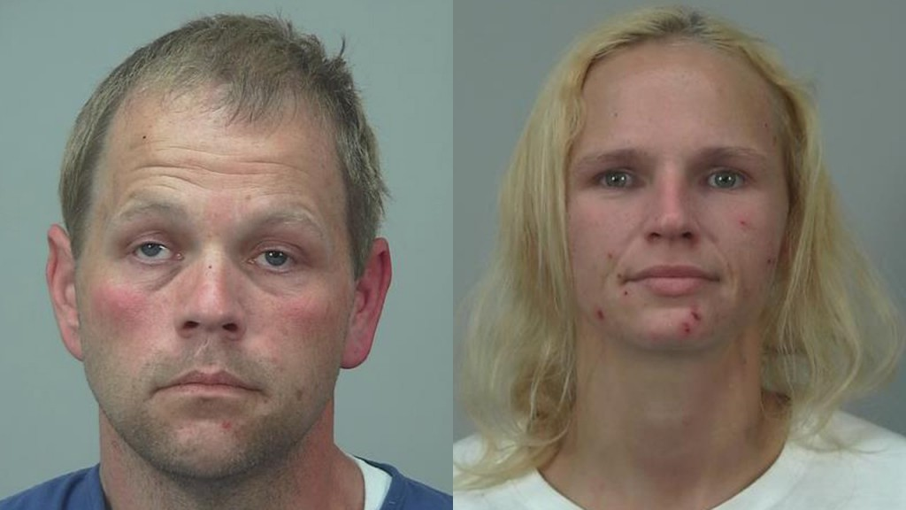 2 arrested in multi-county crime wave, police say