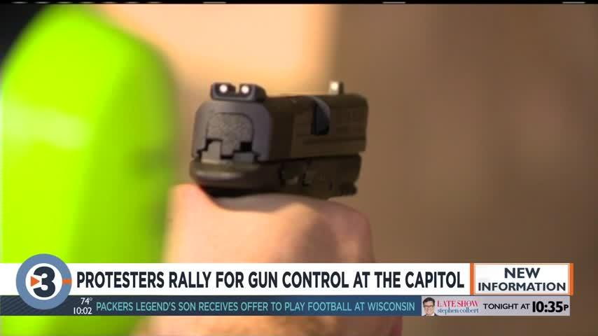 Protesters rally for gun control at the capitol
