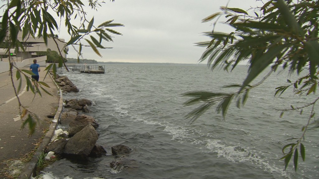 Environmental group urges further testing of water, fish after report shows PFAS in Lake Monona