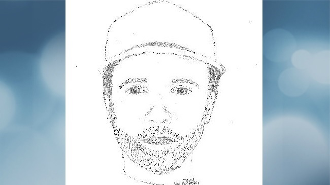 Composite sketch shows suspect in faux-barn-buying attack