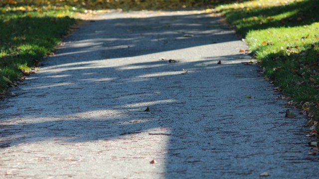 Survey: Some women don't feel safe using trails in Janesville