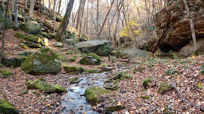 Great fall hikes gallery