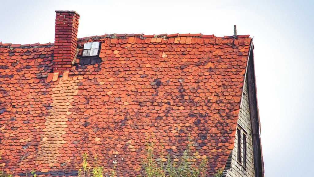 What to do if you need a new roof