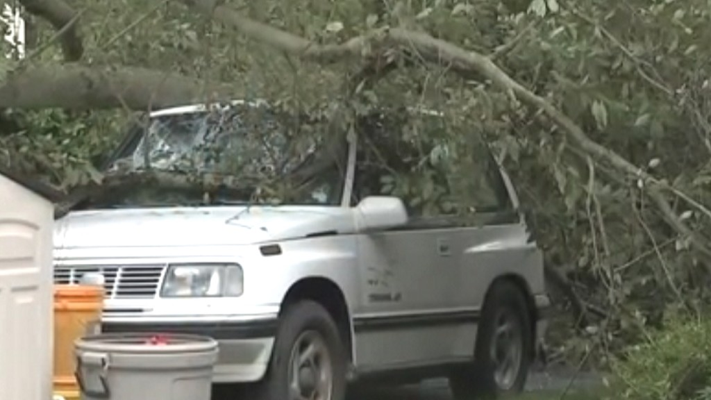 Man dies when tree limb falls on car during storm