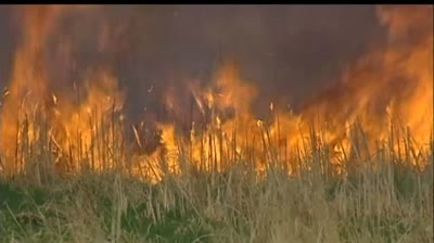 Madison bars outdoor fires amid wildfire concerns
