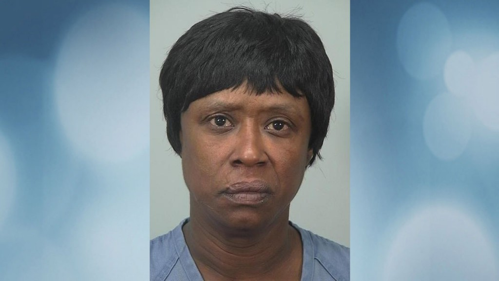 Woman faces charges in north side domestic stabbing