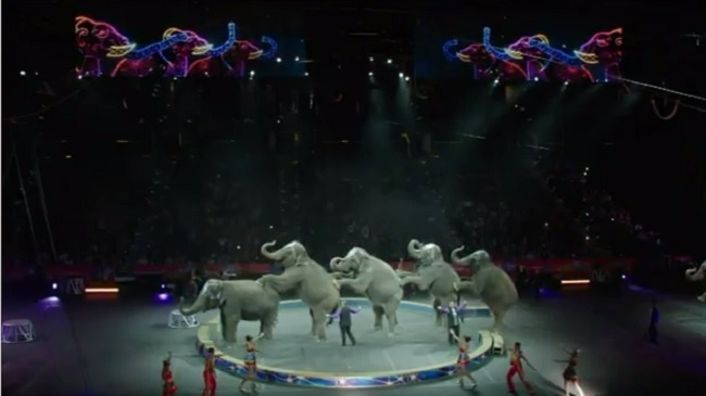 Elephants to depart 'Greatest Show on Earth'