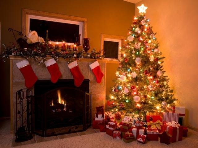 Should you buy a real or fake tree?