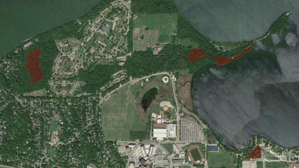 Ash falling from sky in Madison from controlled burns, officials say