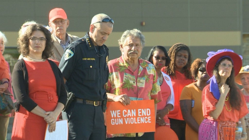 'National Gun Violence Awareness Day' rally comes amid violent year in Madison