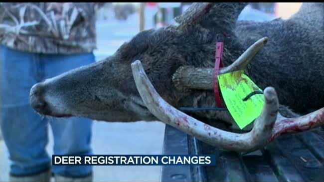 DNR switching to online deer registration this year