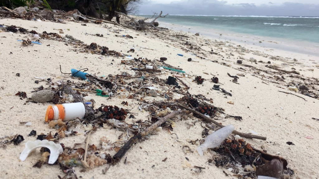 Plastic alternatives could make marine pollution even worse