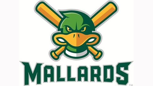 Thousands of dollars' worth of vandalism reported at Mallards stadium
