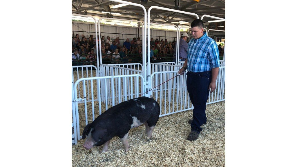 Teen auctions pig to help favorite teacher, cancer research