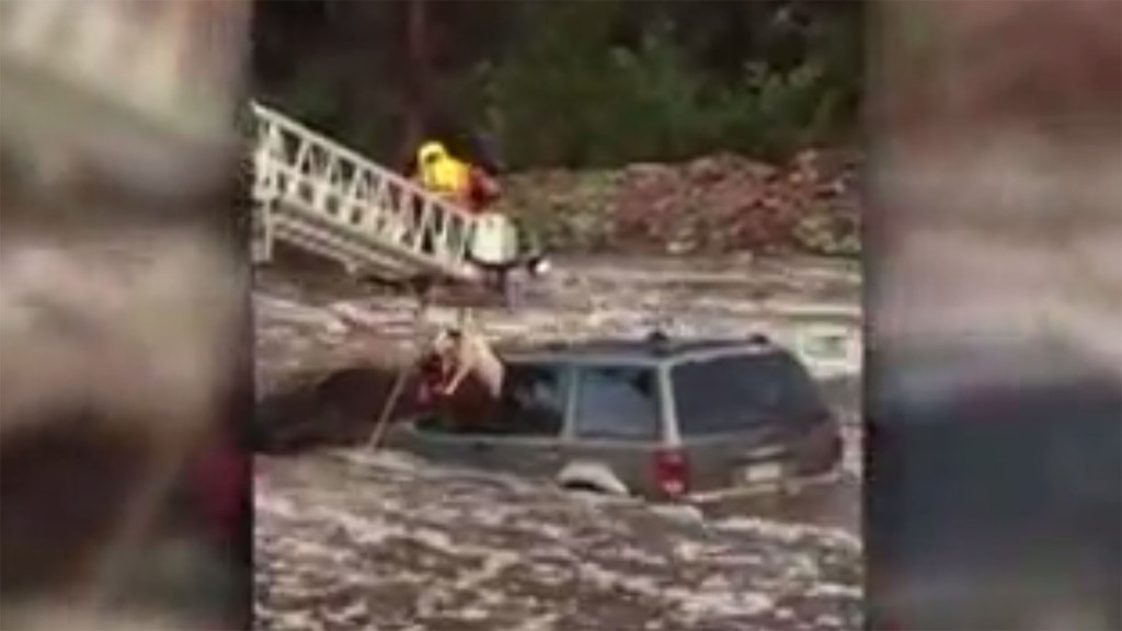 Man, dog saved from flooded creek in dramatic rescue