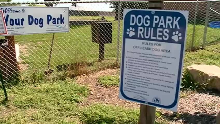 Man cited for gun incident at La Crosse dog park