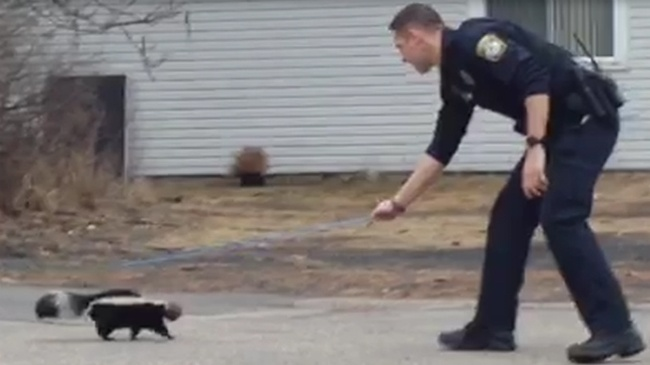 Plover police aid skunk in distress