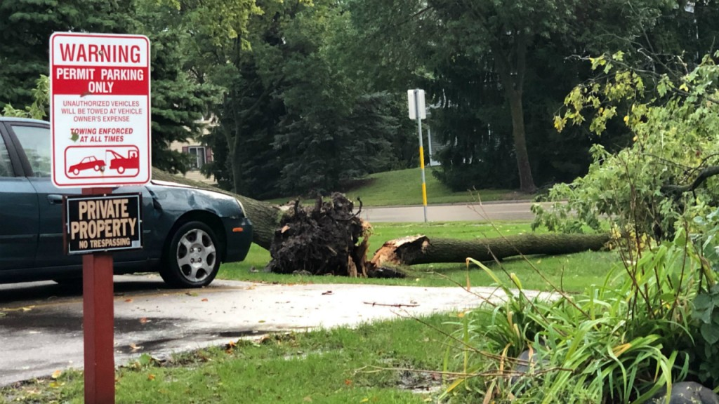 PHOTOS: Damage from overnight storms