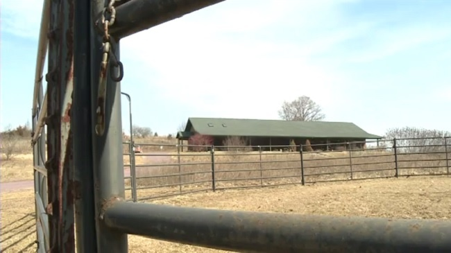 Kids' Ranch saved from uncertain future