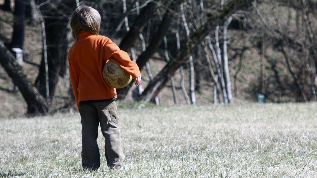 Parents in Utah can no longer be prosecuted for 'free range' kids