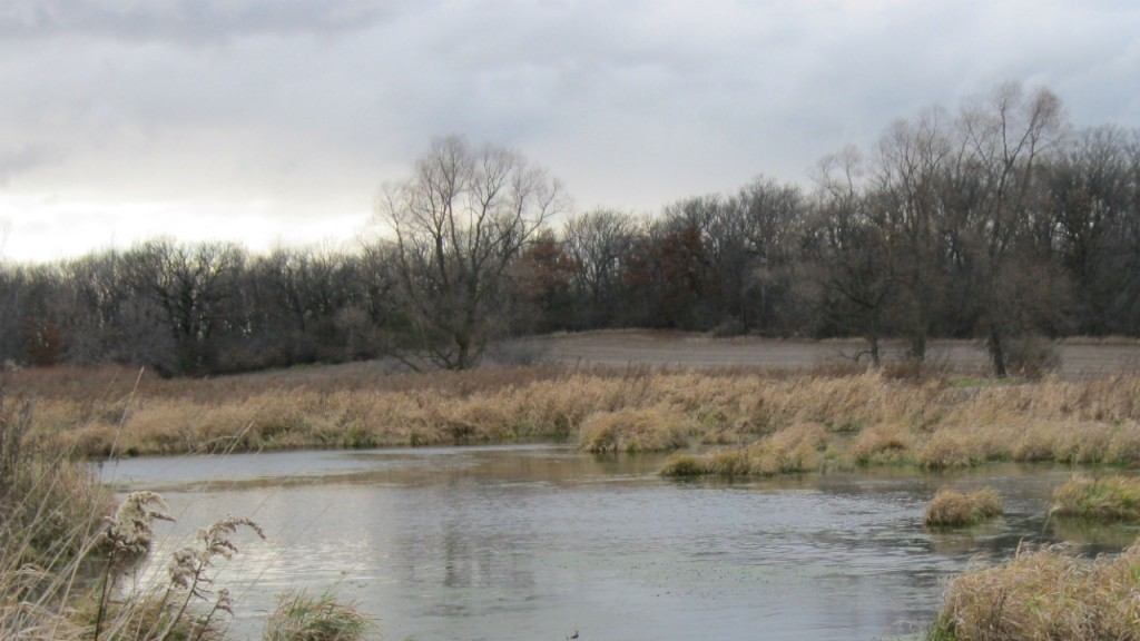 County to buy adjacent 68 acres to expand Token Creek Park