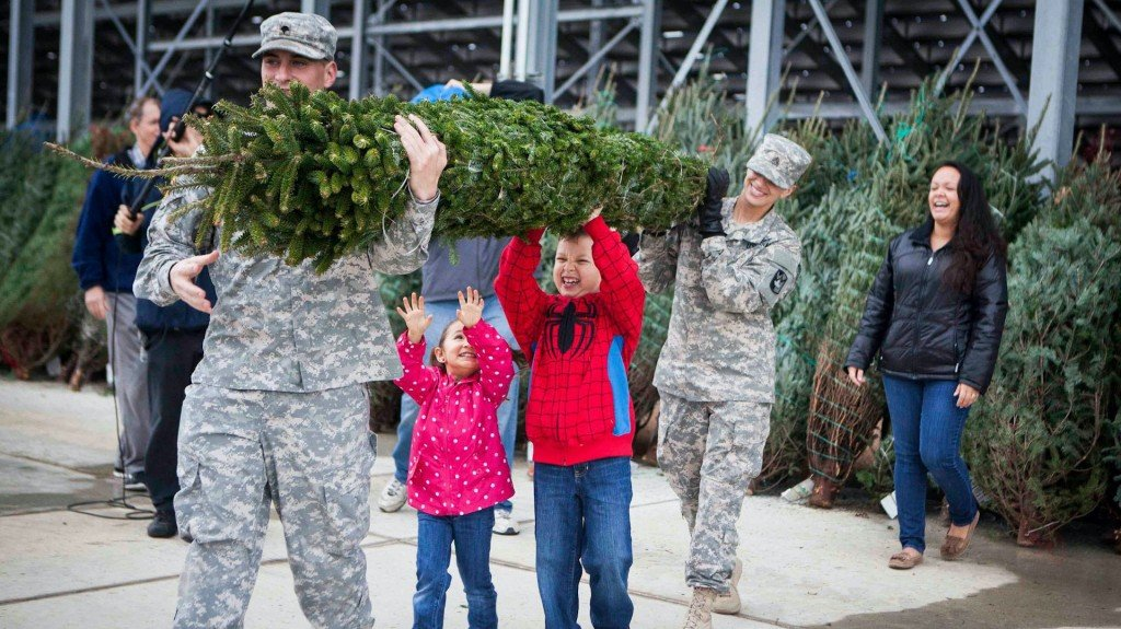 16,000 Christmas trees being delivered to military families