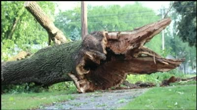 Storms leave scattered damage to conclude holiday weekend