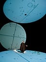 Madison Opera Reaches for the Heavens in 'Galileo Galilei'