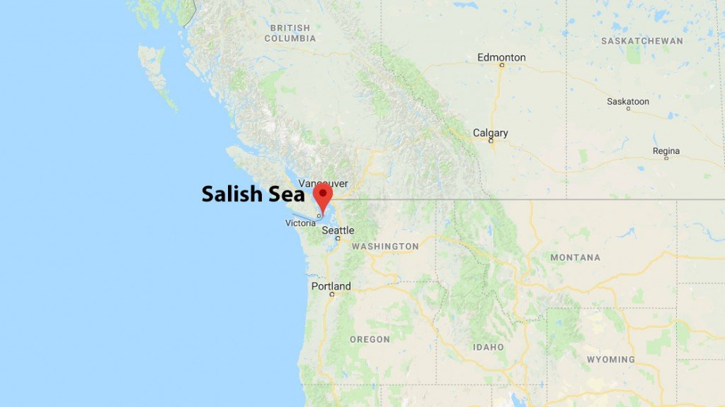 Dismembered human feet washing up on beaches in western Canada