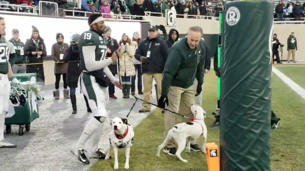 Michigan State player's dogs accompany him on Senior Day after parents' deaths