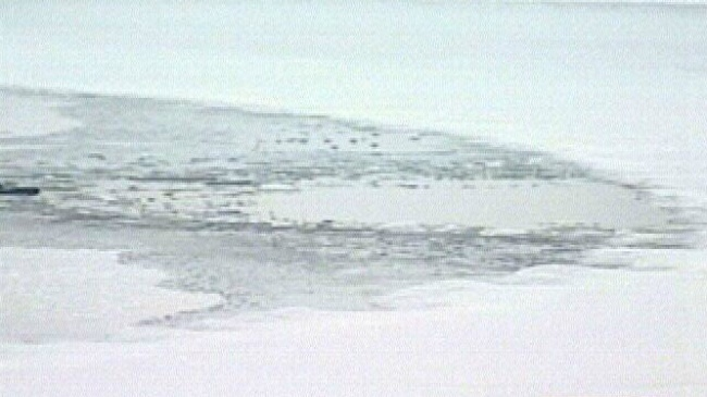 Man, woman, 3 dogs rescued from ice on Lake Waubesa
