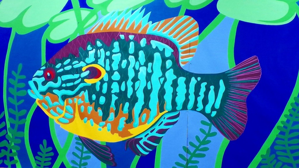Colorful mural of Pumpkinseed fish