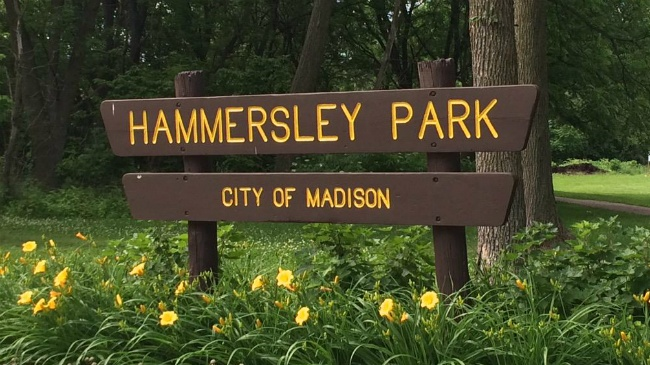 6-year-old sexually assaulted at Madison park, police say