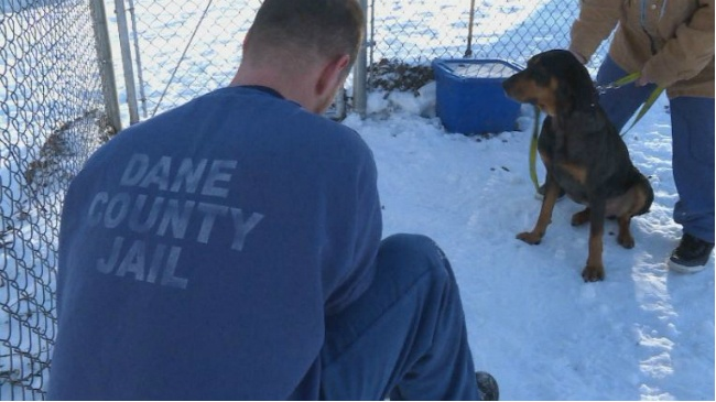 Dane County inmates get new leash on life by training dogs