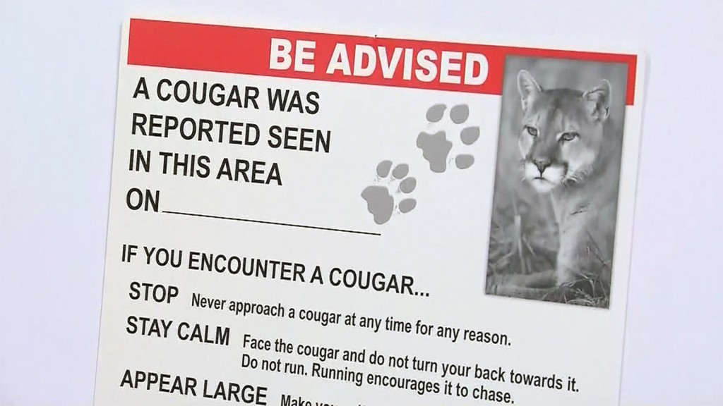 Cougar blamed for fatal attack on woman in Oregon park