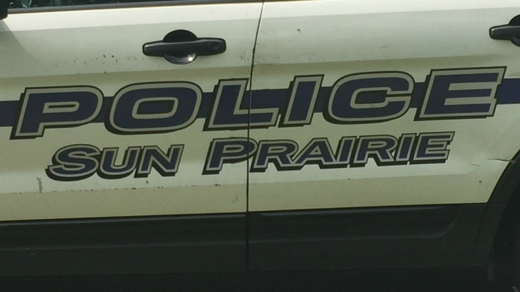 Man faces charges following theft at Sun Prairie grocery store
