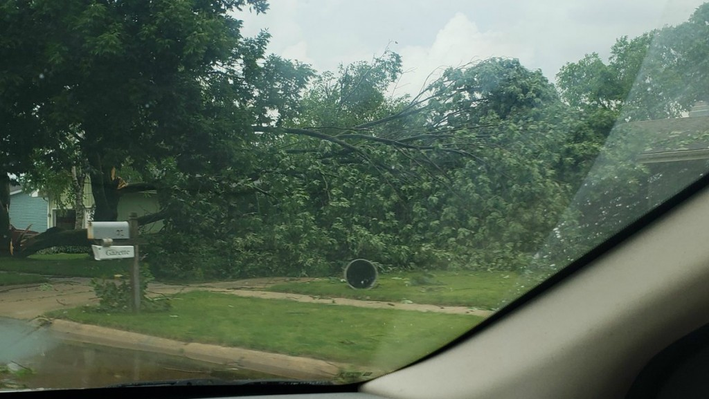 PHOTOS: Strong thunderstorm in Janesville causes heavy damage, fallen trees