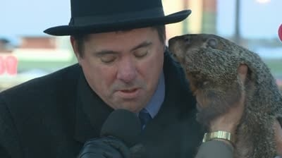 The great groundhog lawsuit