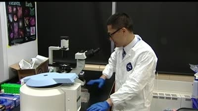 UW researcher makes strides with stem cell technique