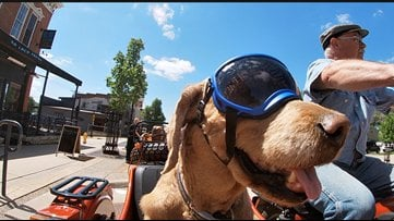 Wqad Man And Dog Travel Countryside