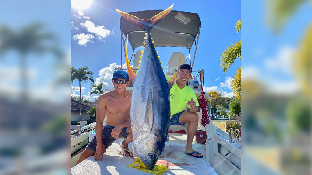 Hawaii 220-Pound Tuna