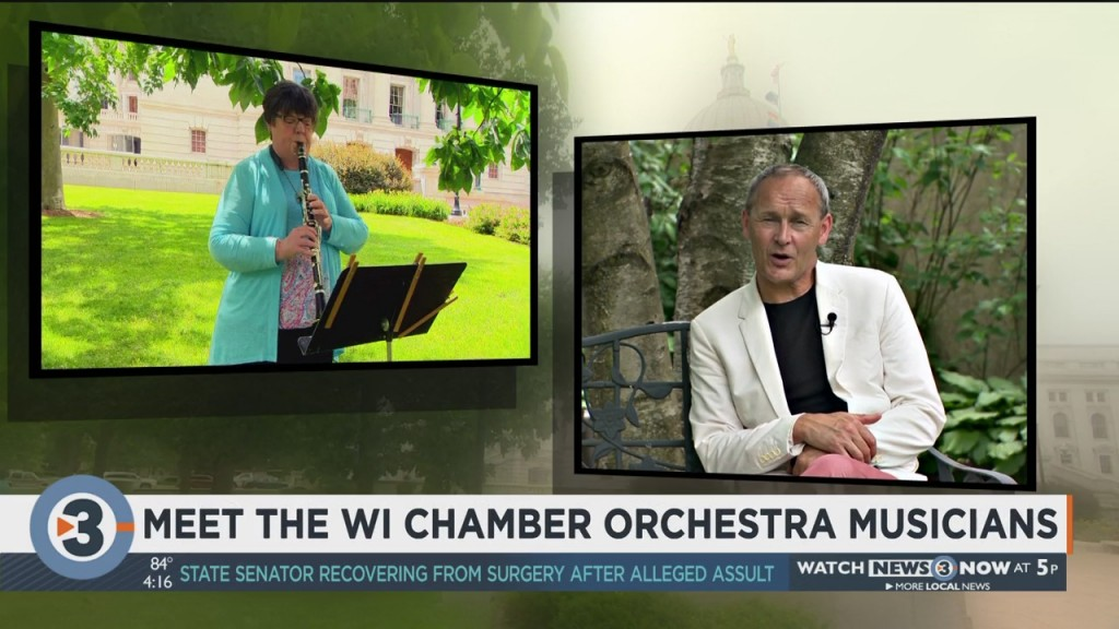 Meet The Wisconsin Chamber Orchestra Musicians