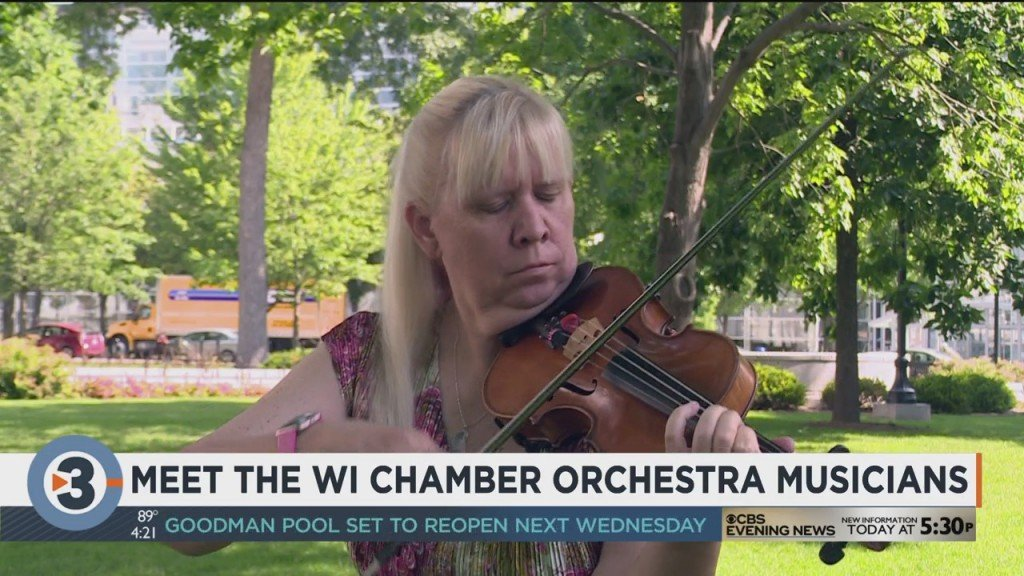 Meet Wisconsin Chamber Orchestra Violinist Suzanne Beia