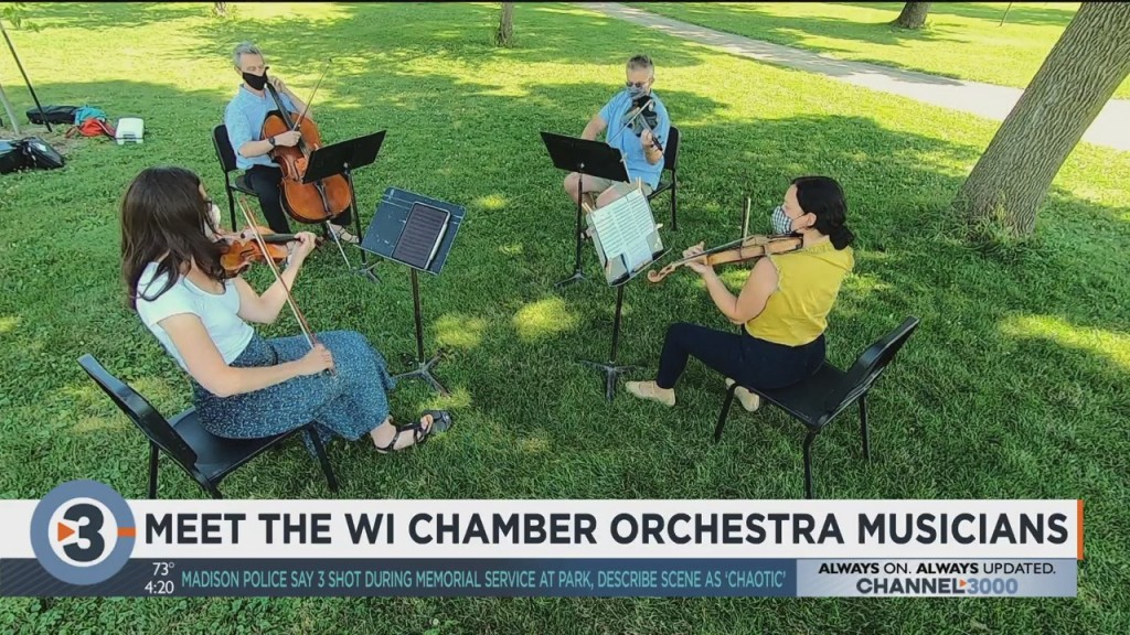 Meet The Wisconsin Chamber Orchestra Musicians: A Performance From A String Quartet