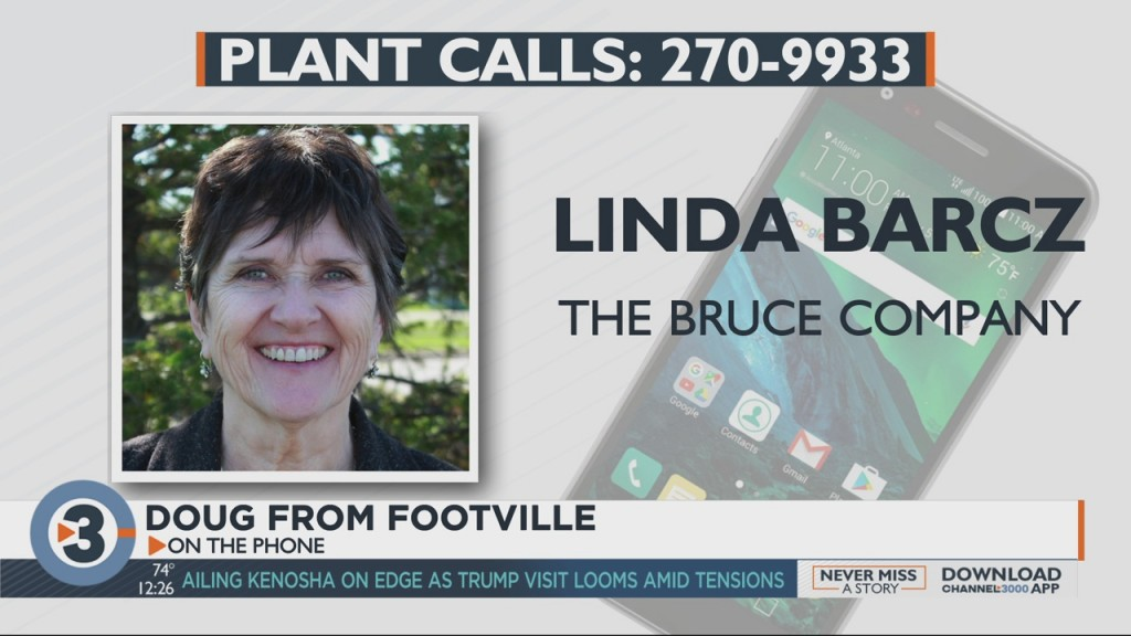 Linda Answers Questions From Viewers About Plants, Gardening