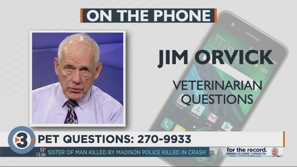 Dr. Jim Orvick Answers Your Pet Questions