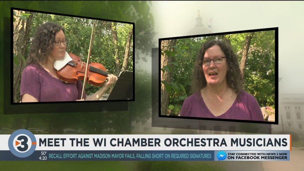 Meet The Wisconsin Chamber Orchestra Musicians: Sharing The Joys Of The Viola