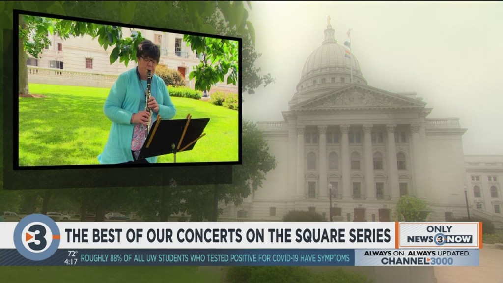 Meet The Wisconsin Chamber Orchestra: The Best Of Our Concerts On The Square Series