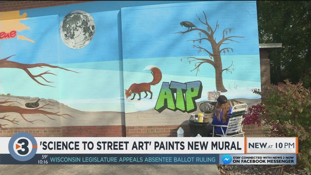 Science To Street Art Paints New Mural In Madison