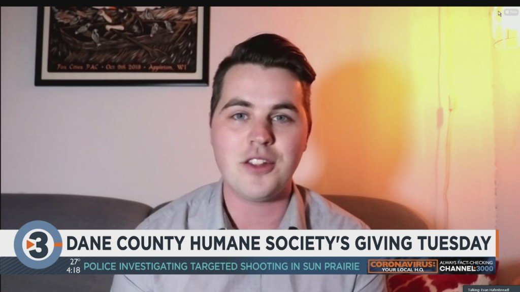Dane County Humane Society Hopes To Raise $80k On Giving Tuesday